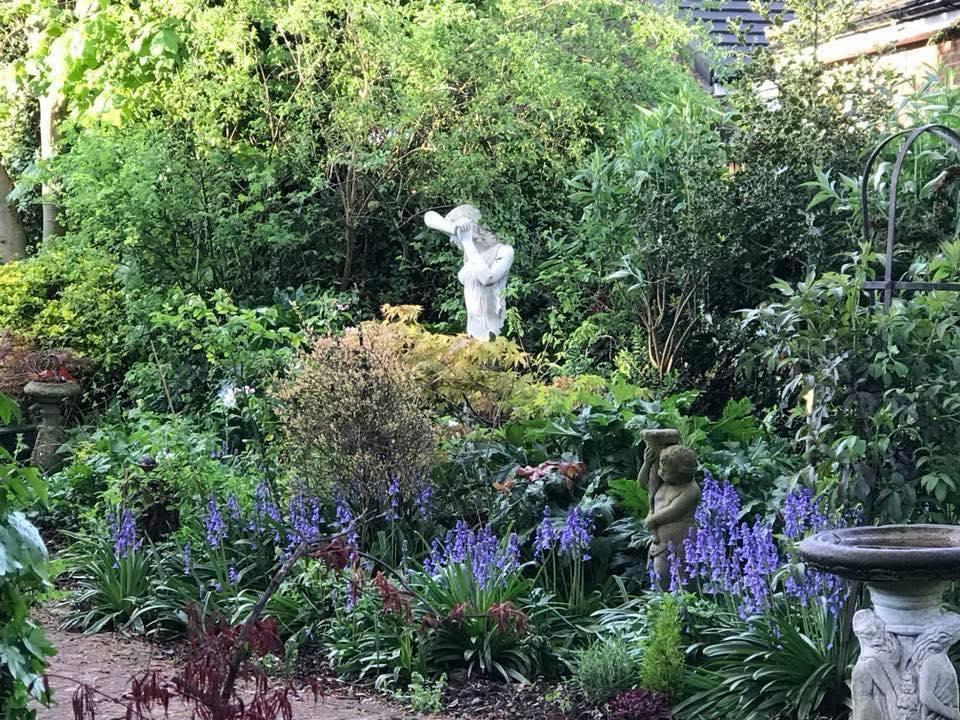 Do you want a low maintenance Garden?